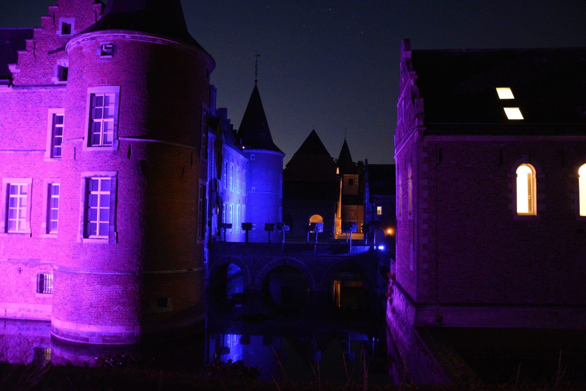 Le château et ses douves vu du côté...
