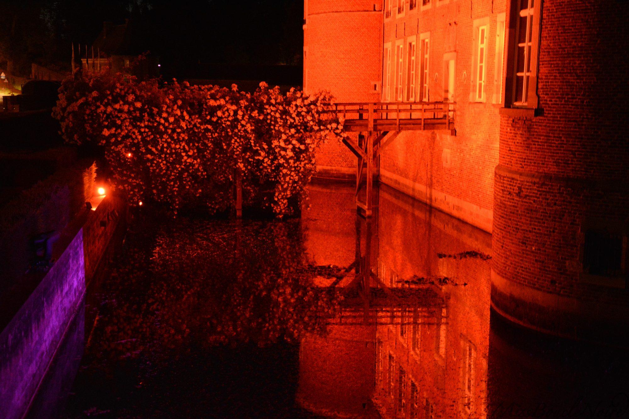 Les douves du château avec un éclairage qui changera au cour de l'histoire pour conter une mésaventure lors de la vente du château...