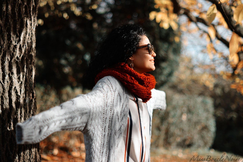 Au revoir les couleurs de l'automne